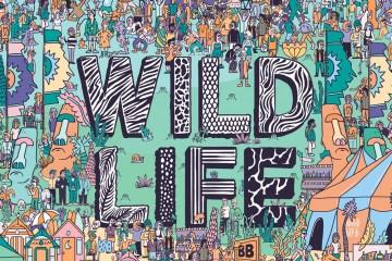 Wildlife Festival 2016